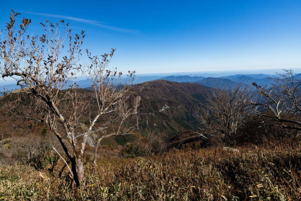 剣山への登山道